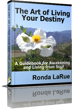 find life meaning book by spiritual teacher ronda larue